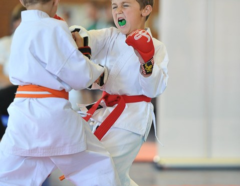 Karate Super League Lions Challenge